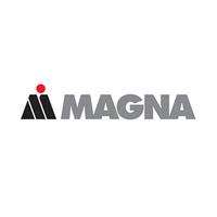 Magna - Eutktoid