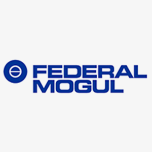 Federal Mogul - Eutktoid